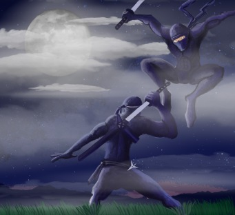 Ninja Night Fight