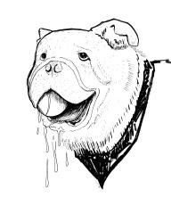 Drooling Bulldog